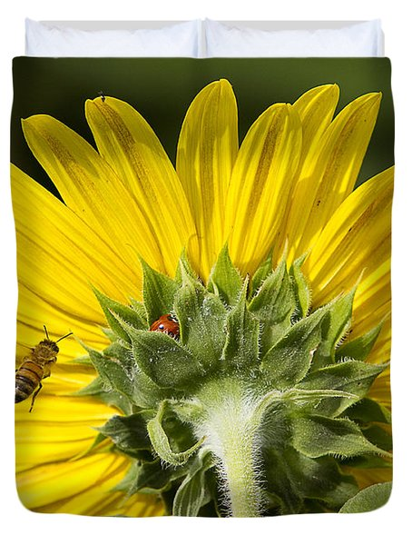 The Bee Lady Bug And Sunflower Duvet Cover
