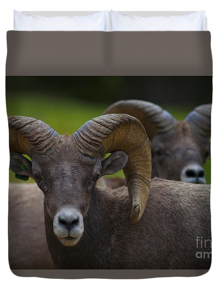 The Big Boys Duvet Cover