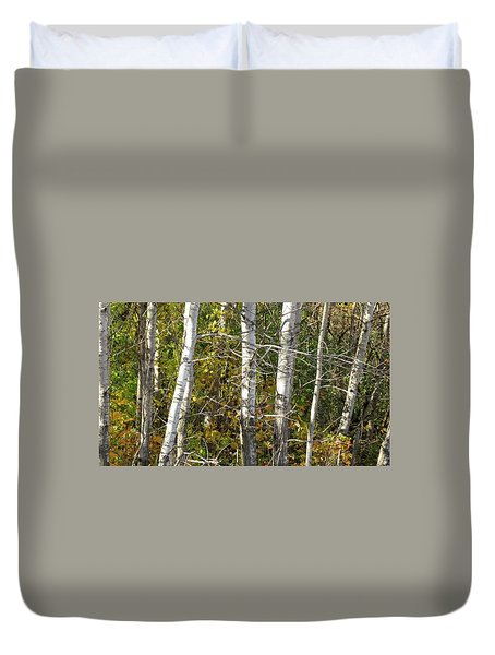 The Birches Duvet Cover by Kimberly Mackowski