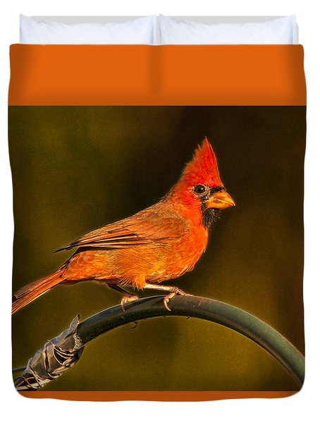 Duvet Cover featuring the photograph The Cardinal by Don Durfee