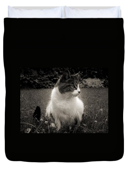 The Cat Came Back Duvet Cover by Maciek Froncisz