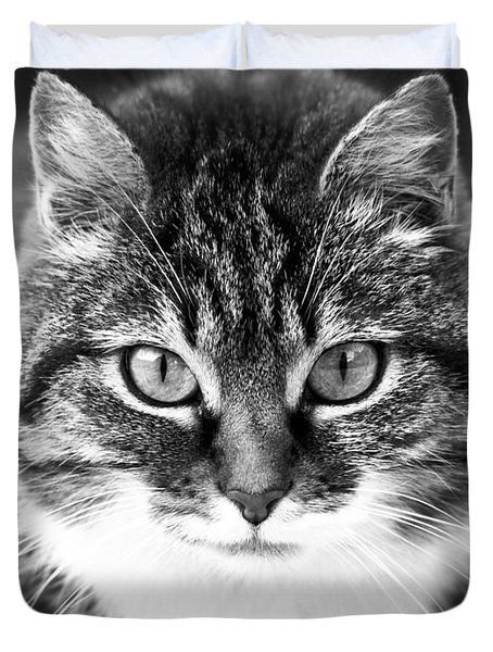 The Cat Stare Down Duvet Cover