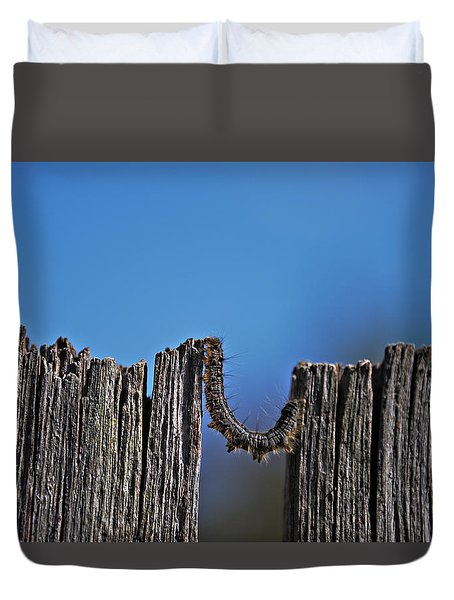 Duvet Cover featuring the photograph The Caterpillar by Cendrine Marrouat