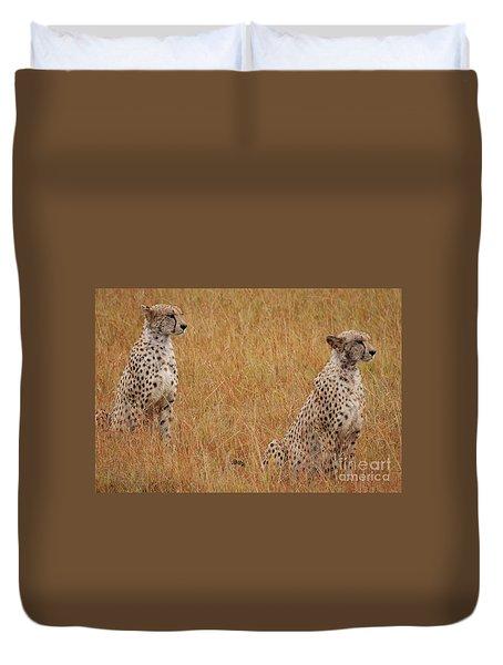 The Cheetahs Duvet Cover by Nichola Denny