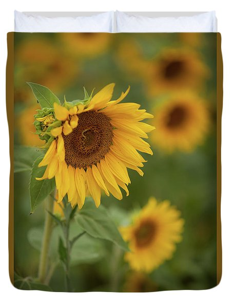 The Close Up Of Sunflowers Duvet Cover
