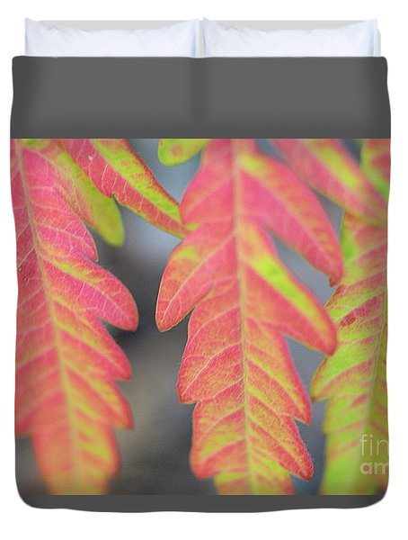 The Colors Of Shumac 8 Duvet Cover by Victor K