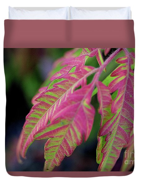 The Colors Of Shumac 9 Duvet Cover