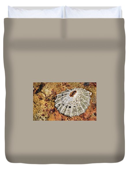 The Common Limpet Duvet Cover