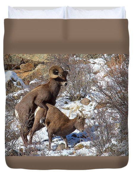 The Coupling Duvet Cover