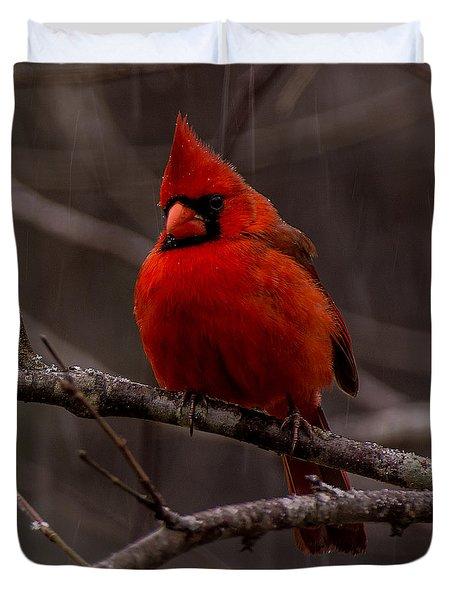 The Crimson Suit Duvet Cover