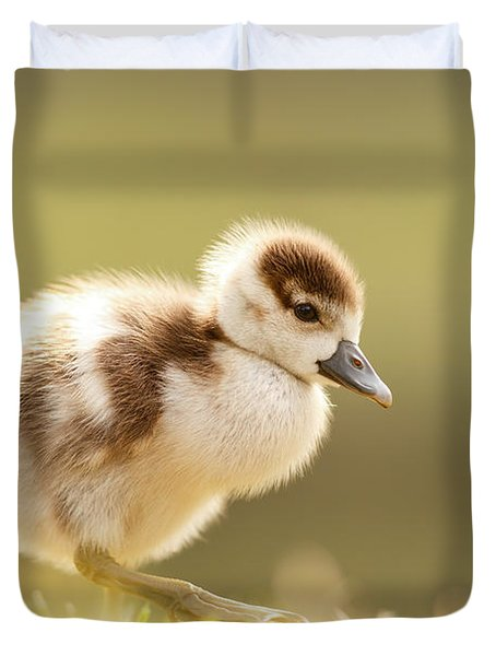 The Cute Factor - Egyptean Gosling Duvet Cover