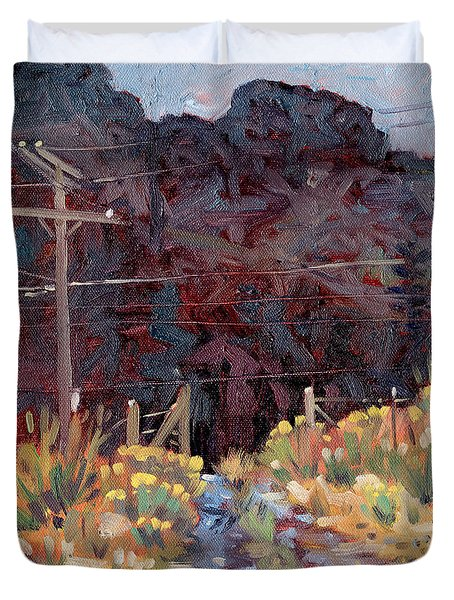 Duvet Cover featuring the painting The Driveway by Donald Maier