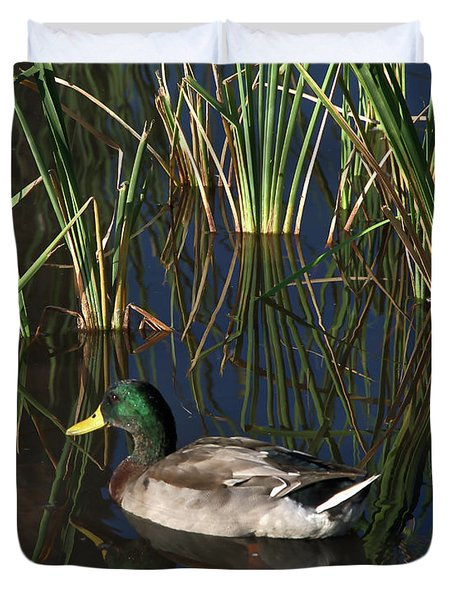 The Duck On The Pond At Papago Park Duvet Cover