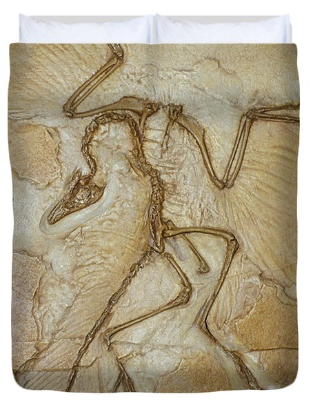 The Earliest Bird, Archaeopteryx Duvet Cover