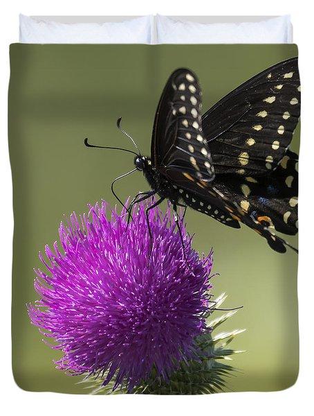 The Eastern Black Swallowtail  Duvet Cover