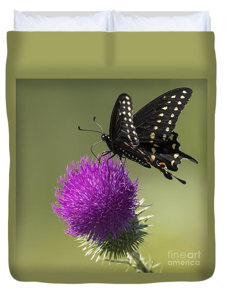 The Eastern Black Swallowtail  Duvet Cover