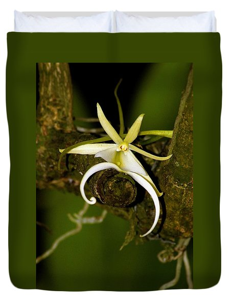 The Elusive And Rare Ghost Orchid Duvet Cover