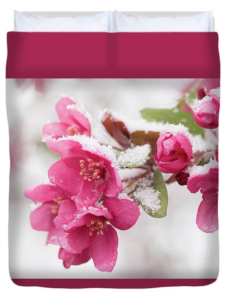 Duvet Cover featuring the photograph The End Of Winter by Ana V Ramirez