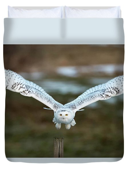 The Eyes Of Intent Duvet Cover