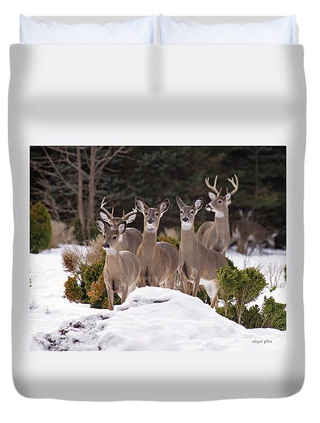 Duvet Cover featuring the photograph The Family by Angel Cher