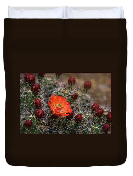 Duvet Cover featuring the photograph The First Bloom  by Saija Lehtonen