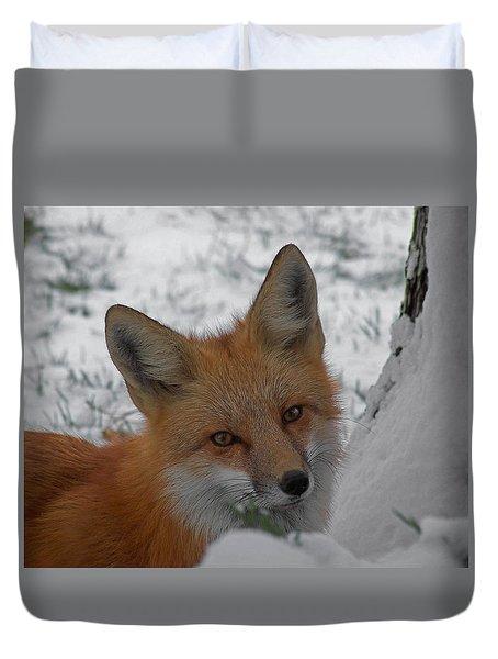 The Fox 4 Duvet Cover by Ernie Echols
