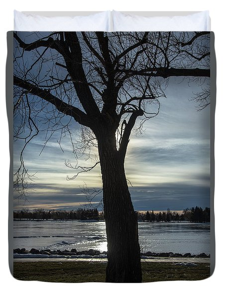 The Frozen Sun Duvet Cover