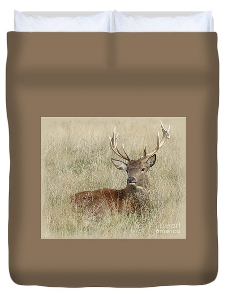 The Gentle Stag Duvet Cover