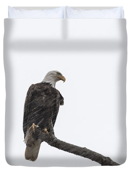 The Great American Bald Eagle 2016-12 Duvet Cover