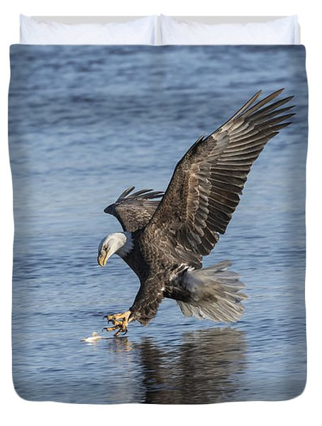 The Great American Bald Eagle 2016-8 Duvet Cover by Thomas Young