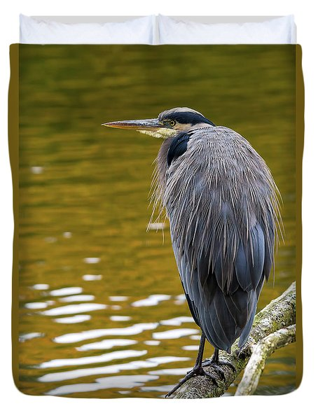 The Great Blue Heron Perched On A Tree Branch Duvet Cover by David Gn