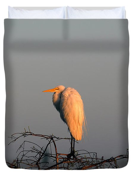 The Great Egret  Duvet Cover by David Lee Thompson