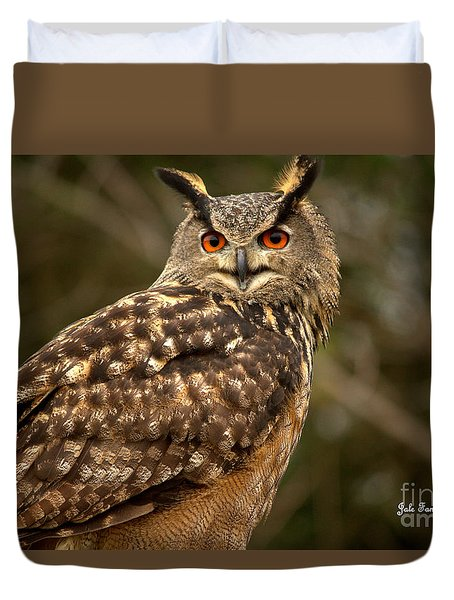 The Great Horned Owl Duvet Cover