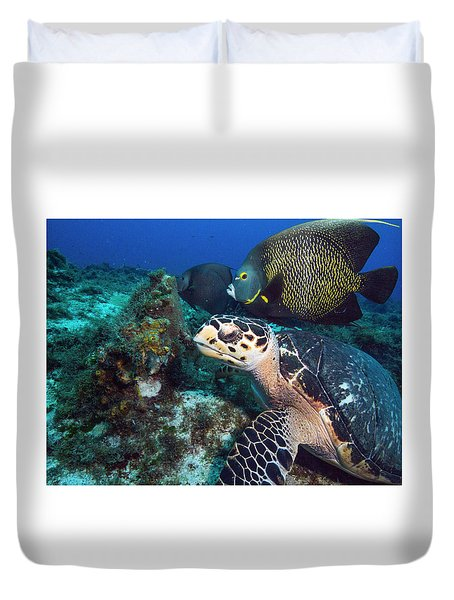 The Green Turtle And The Angelfish Duvet Cover