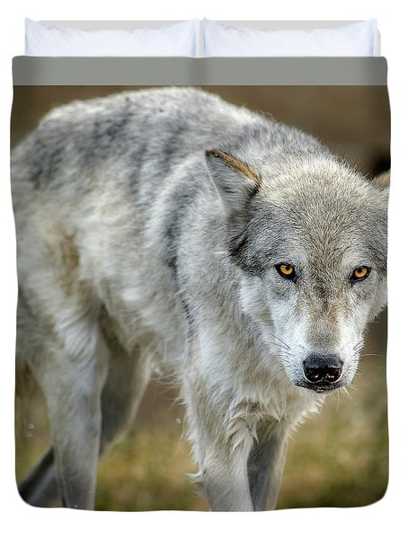 The Grey Wolf Shake Duvet Cover