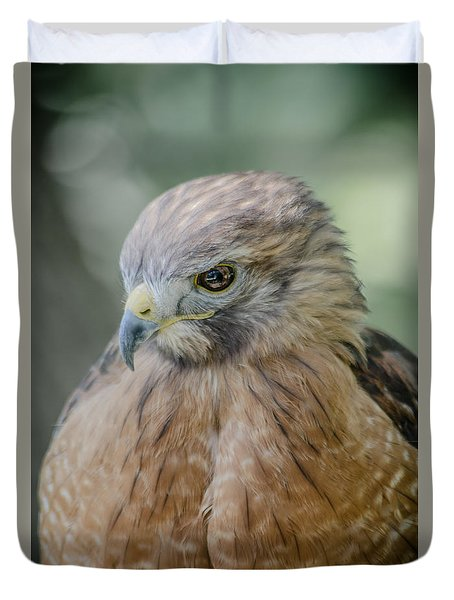 The Hawk Duvet Cover by David Collins