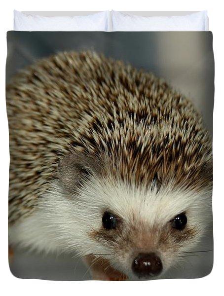 The Hedgehog Duvet Cover