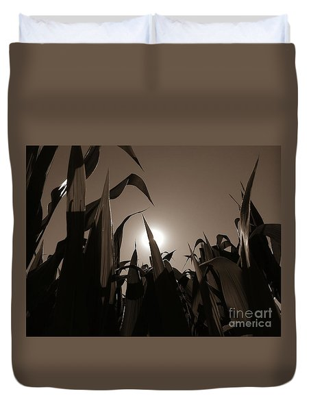The Hiding Sun - Sepia Duvet Cover