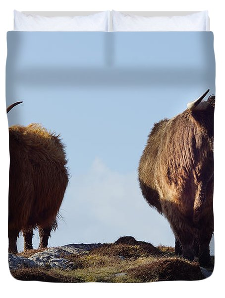 The Highland Cows Duvet Cover