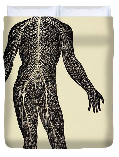 The Human Nervous System. From Virtue S Duvet Cover