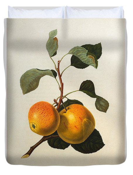 The Kerry Pippin Duvet Cover by William Hooker