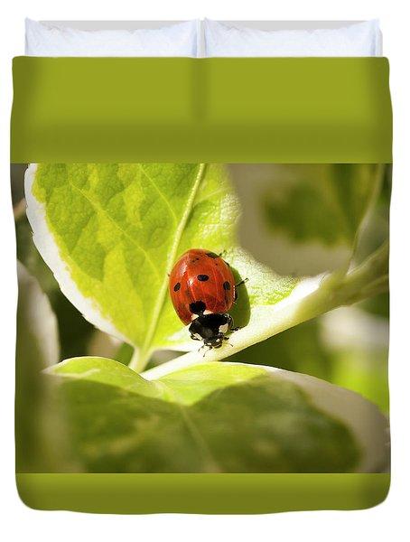 The Ladybug  Duvet Cover
