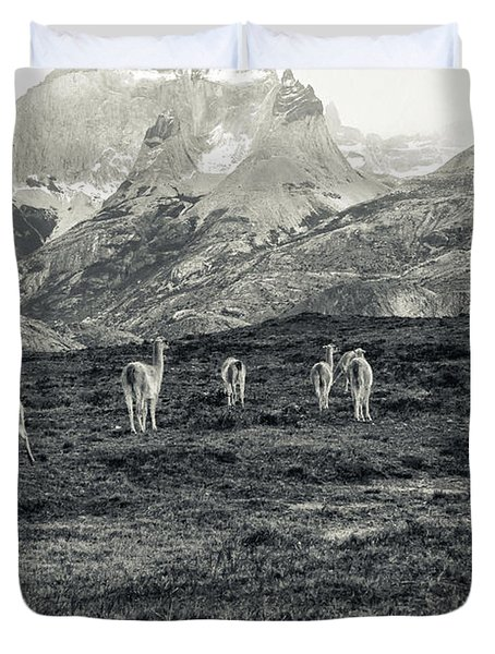 The Lamas Duvet Cover by Andrew Matwijec