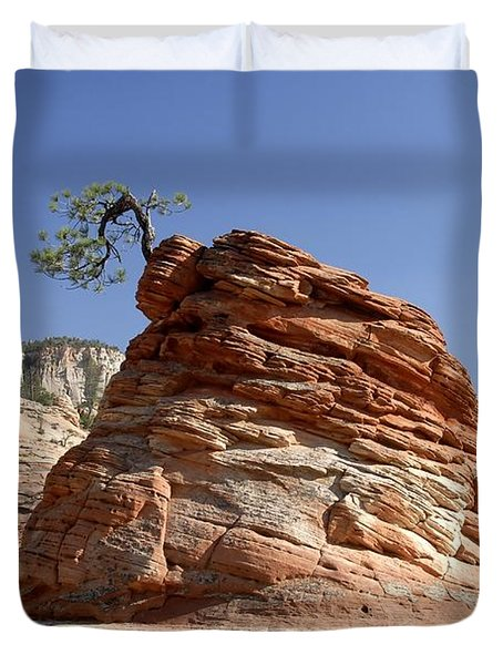The Land Of Zion Duvet Cover by David Lee Thompson