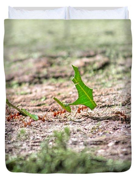 The Leaf Parade  Duvet Cover