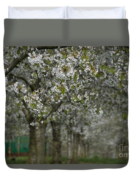Duvet Cover featuring the photograph The Life Awakes 10 by Bruno Santoro