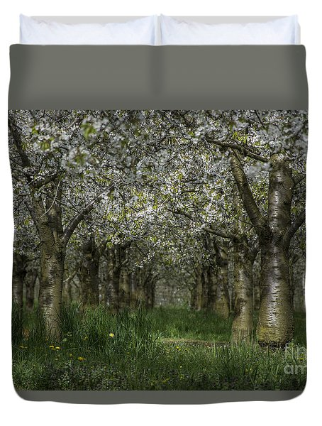 The Life Awakes 11 Duvet Cover