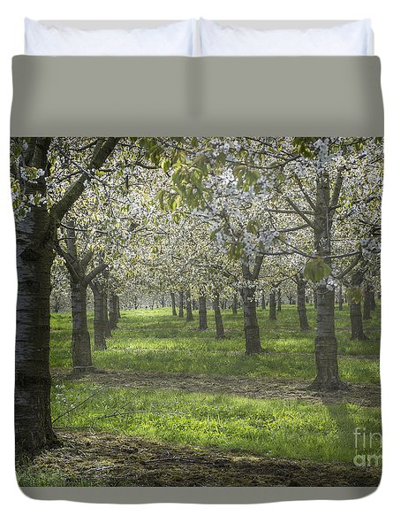 The Life Awakes 12 Duvet Cover