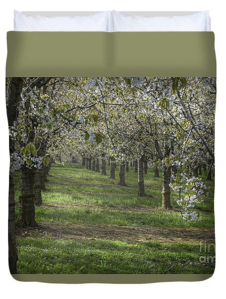 The Life Awakes 13 Duvet Cover