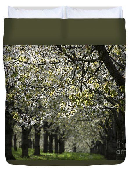 The Life Awakes 15 Duvet Cover
